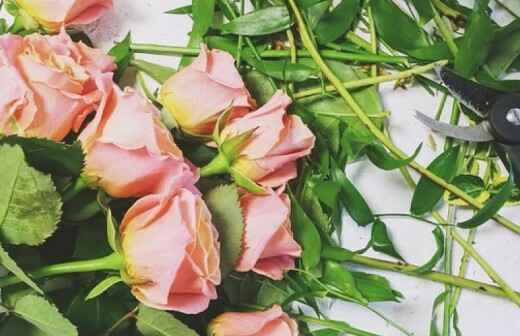 Blumenhändler - Pergola