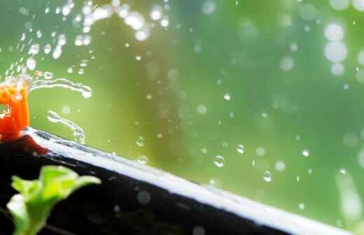 Automatisches Bewässerungssystem warten - Auto