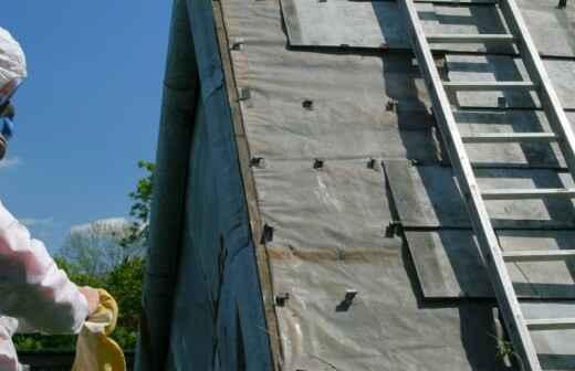 Asbestos Inspection - Termite