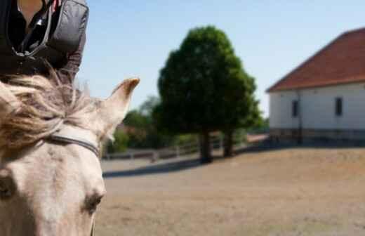 Pony Riding