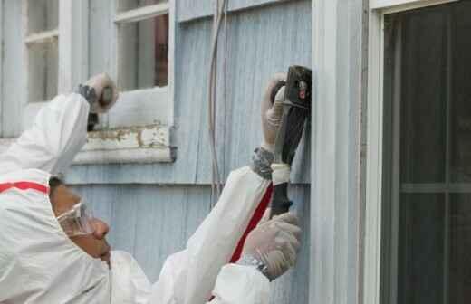 Lead Testing - Termite