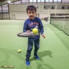Pro-Tennis Bern -  anos