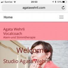 Studio Agata Wehrli - Fixando Schweiz