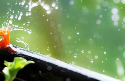 Automatisches Bewässerungssystem warten