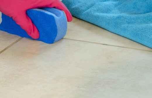 Fliesen- und Fugenreinigung - Teppiche