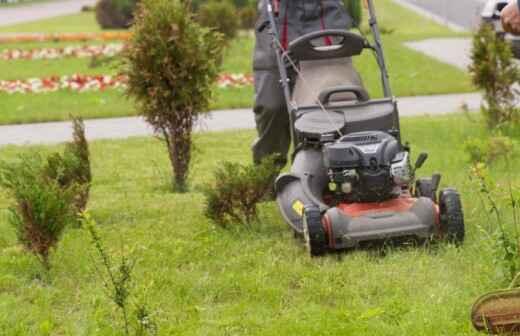 Rasenkanten verlegen