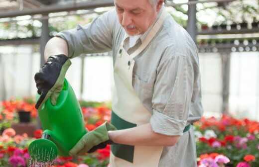 Gartenbewässerung und -pflege - Nachsaat