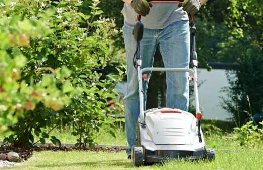 Rasenpflege - Kompletter Rundum-Service - Mit Rasen Bedecken
