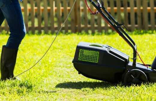 Rasenmähen und Schneiden (regelmäßig) - Mit Rasen Bedecken