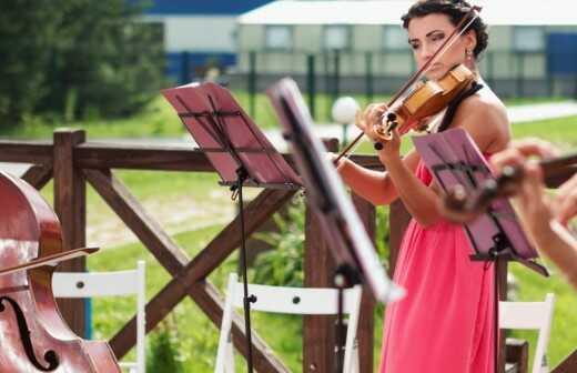 Musik für die Trauungszeremonie - Harfenspieler