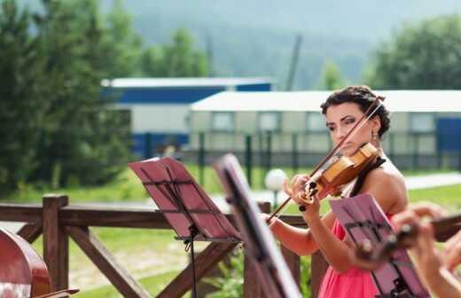 Klassikband für Hochzeiten - Trios