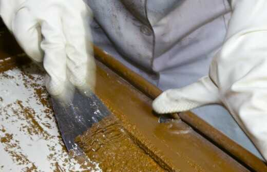 Entlackung und Farbentfernung - Soja