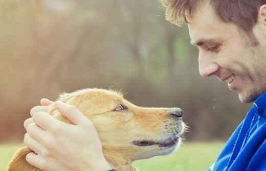 Cuidar tus perros - Perfume