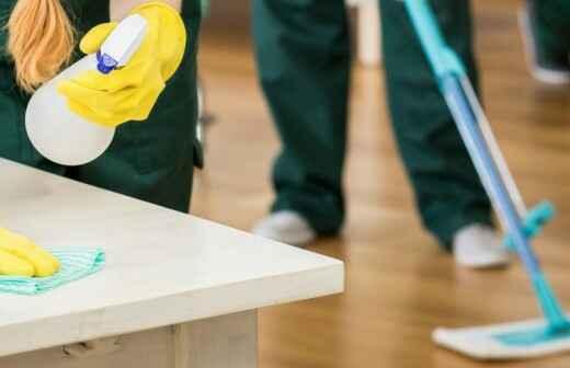 Limpieza del hogar (recurrente) - Chimenea