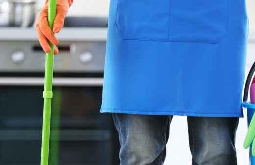 Limpieza general - Saneamiento