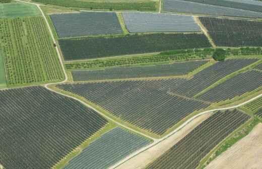 Fotografía aérea - Vista Aérea Con Drone