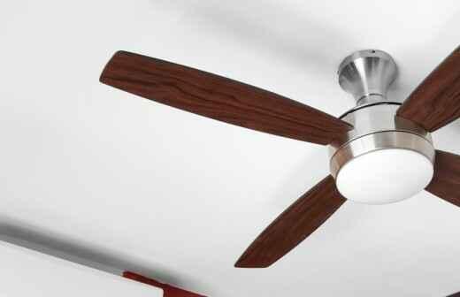Ceiling Fan - Ventless