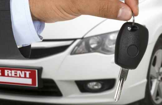 Town Car Rental - Driving Service