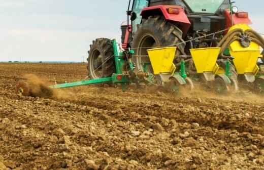 Seeding - Mulch