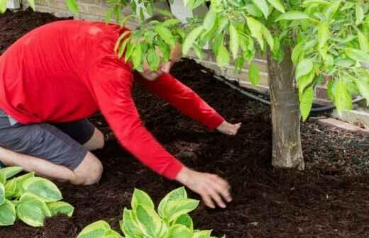 Mulching - Herb