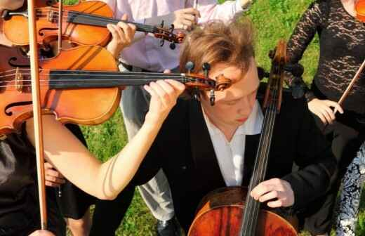 Classical Band Entertainment - Harpist