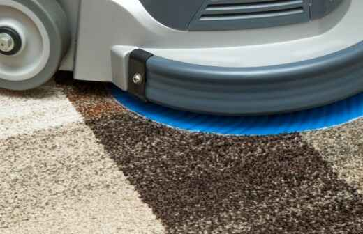 Carpet Cleaning - Changing