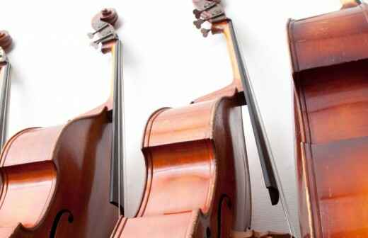 Double Bass Lessons (for children or teenagers)