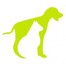 Pet Land - Hotel e Creche para Animais - Lisboa