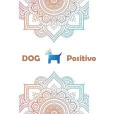 DOG Positivo - Treino de Animais - Santarém