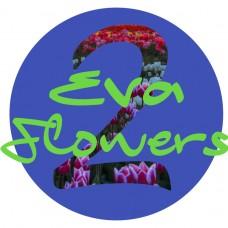 Eva2flowers - Floristas - Lisboa