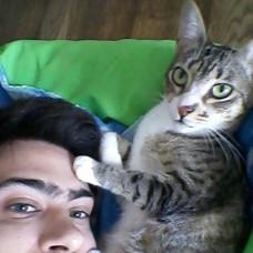 Sérgio Sena Animal Care - Babysitting - Lisboa