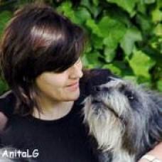 Consultoria Técnica Canina Aradik - Treino de Cães - Setúbal