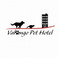 Valongo Pet Hotel - Hotel para Cães - Alfena