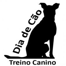 Dia de Cão - Treino Canino - Treino de Cães - Setúbal