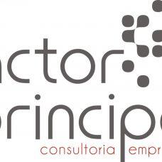 Factor Principal-Contabilidade,Consultoria,Projectos e Formação Lda -  anos