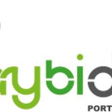 guaybidoor - Guaybito, Lda - Painéis Solares - Braga
