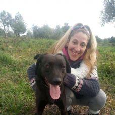 Pet sitting/Dog walking /creche canina Peniche e arredores - Veterinários - Lisboa