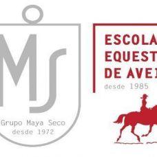 Escola Equestre d`AVEIRO Lda - Aulas de Desporto - Aveiro