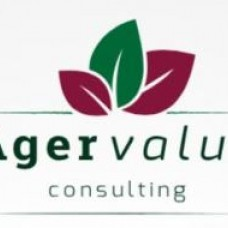 Agervalue Consulting - Imobiliárias - Lisboa