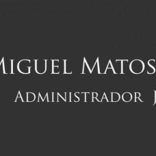 MIGUEL MATOS TORRES, SAI - Consultoria de Estatística - Lisboa
