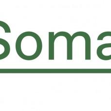 Espaço Soma - Fisioterapia - Fisioterapia - Faro
