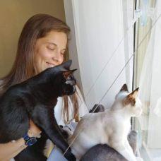 Pet Care / Dog Walker -  anos