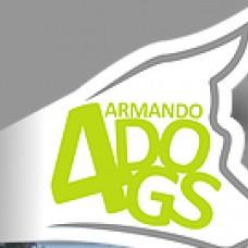 Armando4Dogs - Treino de Cães - Aveiro