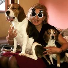 Carina Azevedo - Cuidados para Animais de Estimação - Braga