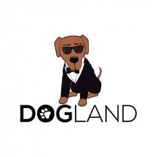 Dogland - Treino de Animais - Braga