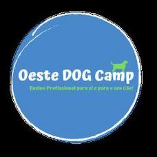 Oeste DOG Camp - Treino de Animais - Leiria