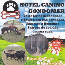 Hotel Canino Gondomar - Quinta Diamante - Hotel para Cães - Rio Tinto