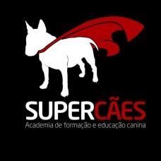 Associação Vimaranense Super Cães - Treino de Animais - Braga