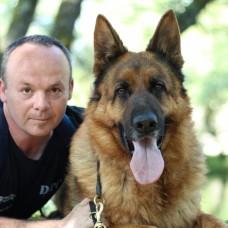 DOGS TRAINING CONCEPTS - Treino de Cães - Viana do Castelo
