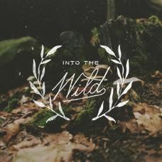 Into The Wild -  anos